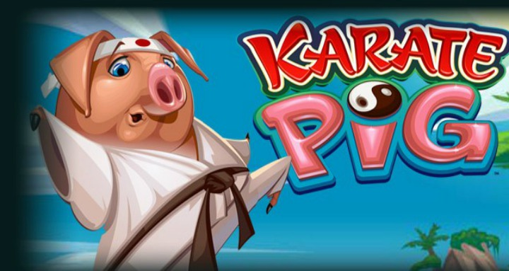My attraction towards Karate Pig